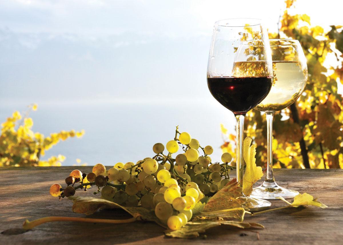 wijn-kopen
