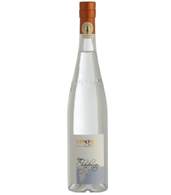 Pisoni-chardonnay2